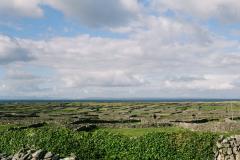 ml-aran-islands-fields